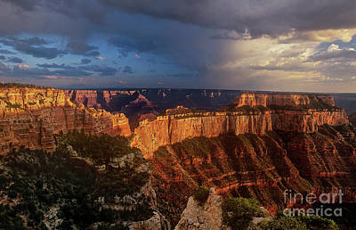 Photograph - Cape Royal Sunset North Rim Grand Canyon Np Arizona by Dave Welling
