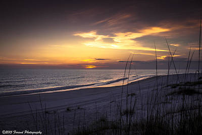 Photograph - Cape San Blas Sunset by Debra Forand
