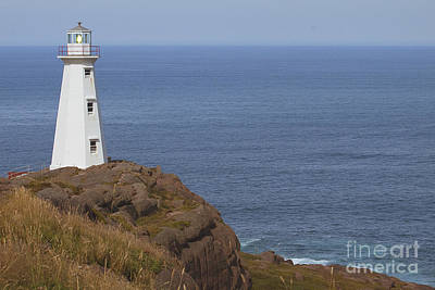 Cape Spear Art Print by Eunice Gibb