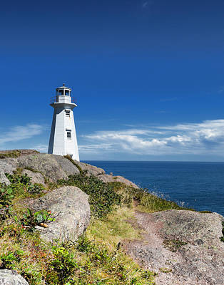 Cape Spear Lighthouse Vrt Art Print by Steve Hurt