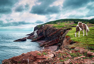 Cape St. Lawrence Art Print by Tracy Munson