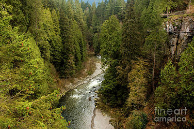 Photograph - Capilano River by Ivete Basso Photography