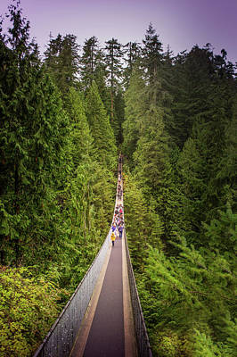North Vancouver Photograph - Capilano Suspension Bridge, North Vancouver, Canada by Art Spectrum