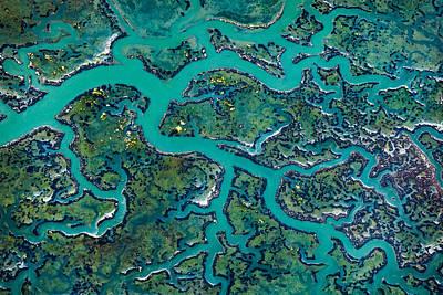 Moss Landing Photograph - Capillaries by Thorsten Scheuermann