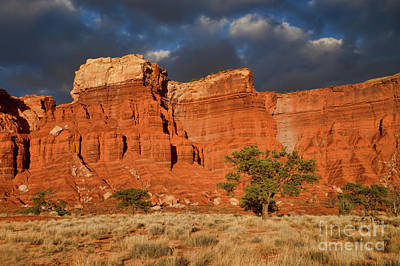 Photograph - Capital Reef Rock Formation by Roxie Crouch