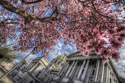 Digital Art - Capitol Blossoms by Patrick Groleau