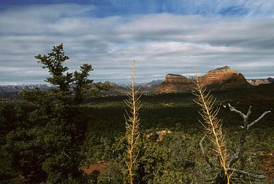 Photograph - Capitol Butte Sedona Arizona by Gary Wonning