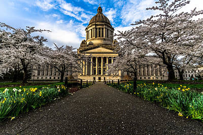 Photograph - Capitol In Spring by David Stine