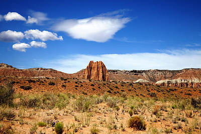 Photograph - Capitol Reef National  by Mark Smith