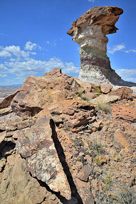 Photograph - Capitol Reef Toadstool by Ray Mathis