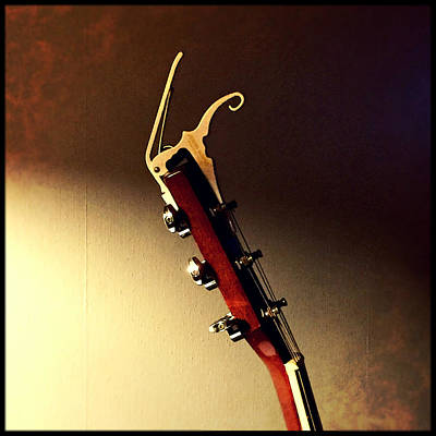 Photograph - Capo At Rest by Eddy Mann