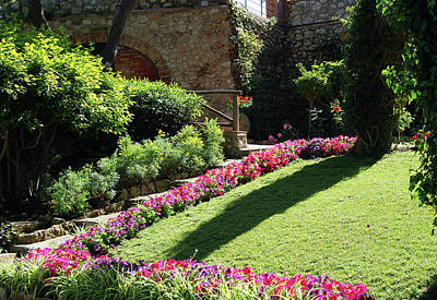 Photograph - Capri's Gardens Of Augustus by Harvey Barrison