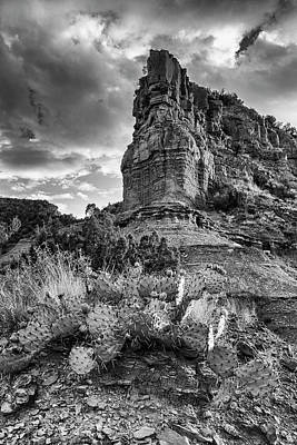 Art Print featuring the photograph Caprock And Cactus by Stephen Stookey