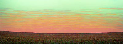 Caprock Sunrise With Bunny Holly Art Print