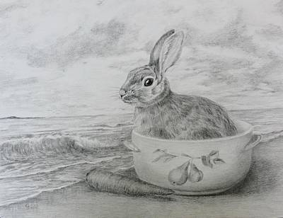 Drawing - Captain Bunny by Grace Diehl