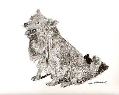 Drawing - Captain Rojo by Jack Pumphrey