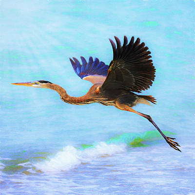 Digital Art - Captiva Crane In Flight by Robert FERD Frank