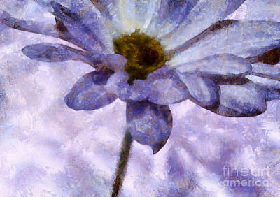 Daisy Photograph - Captivating Moments by Krissy Katsimbras