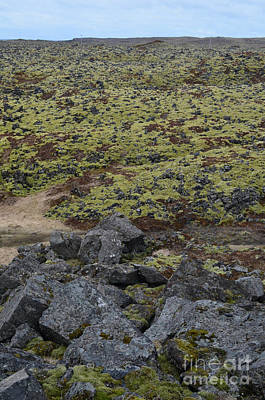 Photograph - Captivating View Of A Lava Field With Moss And Volcanic Rocks  by DejaVu Designs