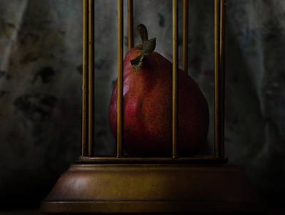 Photograph - Captive - The Pear Drama 985 by Rae Ann  M Garrett