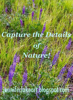 Photograph - Capture The Details Of Nature by Jennifer Lake