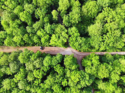 Photograph - Car In Green Forest Aerial View by Matthias Hauser