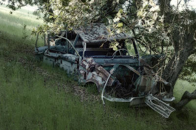 Photograph - Car Vs Tree by Peter Dyke