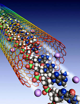 Photograph - Carbon Nanotube, Ions And Dna by Science Source