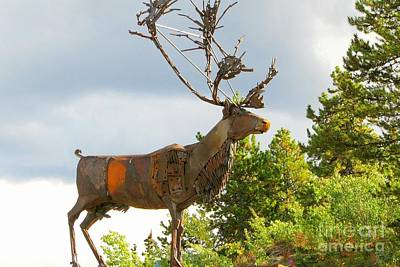 Photograph - Carcross Sculpture by Frank Townsley