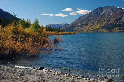 Photograph - Carcross Yukon by Cindy Murphy - NightVisions