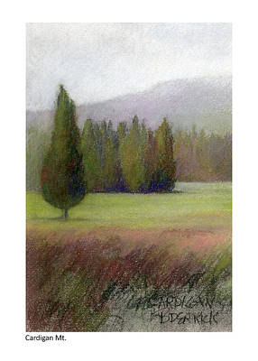 Pastel - Cardigan Mt. Study by Betsy Derrick