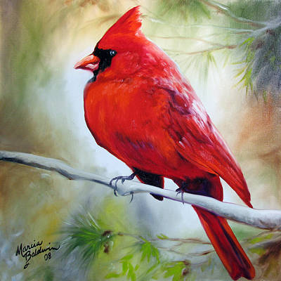 Painting - Cardinal 18 by Marcia Baldwin