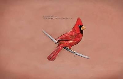 Cardinal Digital Art - Cardinal by Alice Kent