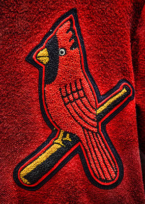 Cardinal Baseball Art Print by Stephen Stookey