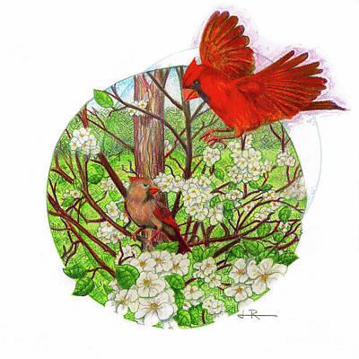 Cardinal Drawing - Cardinal Couple / Pear Tree by Jim Rehlin