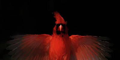 Photograph - Cardinal Drama by Pete Rems