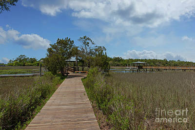 Photograph - Cardinal Hill Community Dock by Dale Powell