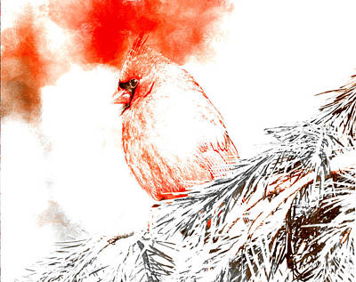 Digital Art - Cardinal In Snow by Femina Photo Art By Maggie