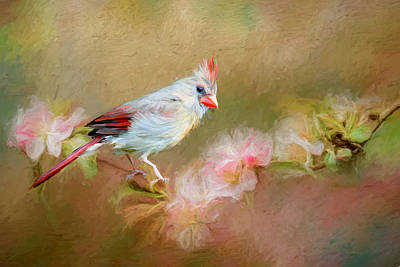 Photograph - Cardinal In The Flowers - Painting by Ericamaxine Price