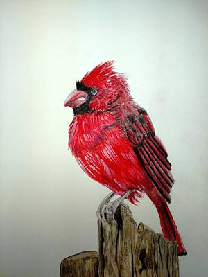 Painting - Cardinal by Joan Mansson