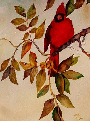 Painting - Cardinal by Lil Taylor