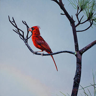 Painting - Cardinal by Manuel Lopez