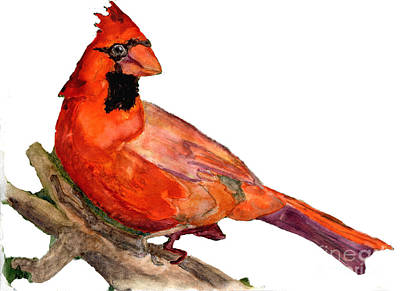 Painting - Cardinal On Branch by Andrea Rubinstein