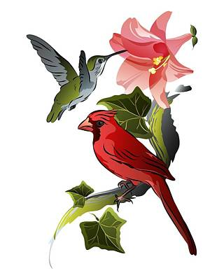 Cardinal On Ivy Branch With Hummingbird And Pink Lily Art Print