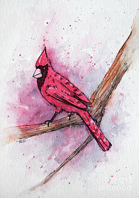 Painting - Cardinal by Rebecca Davis