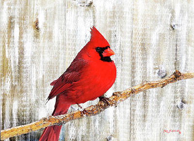 Parakeet Mixed Media - Cardinal Rustic Art by Ken Figurski
