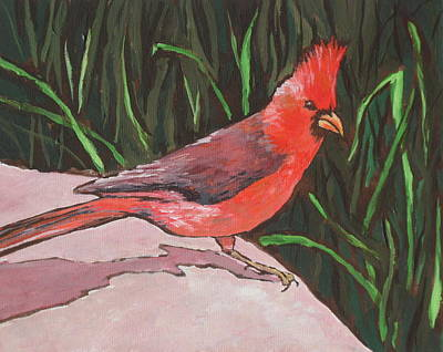 Painting - Cardinal by Sandy Tracey
