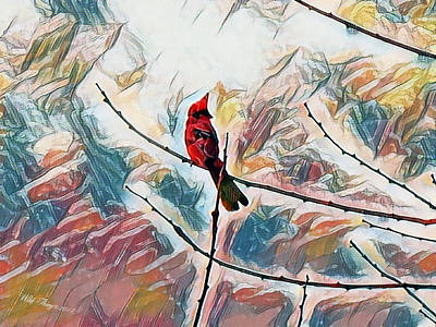 Photograph - Cardinal Spring by Wild Thing