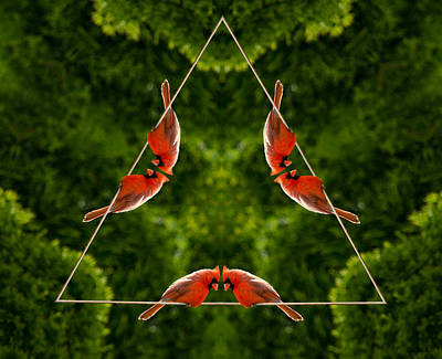 Photograph - Cardinal Triangle by Crystal Wightman