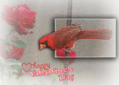 Photograph - Cardinal Valentine Card by Leticia Latocki